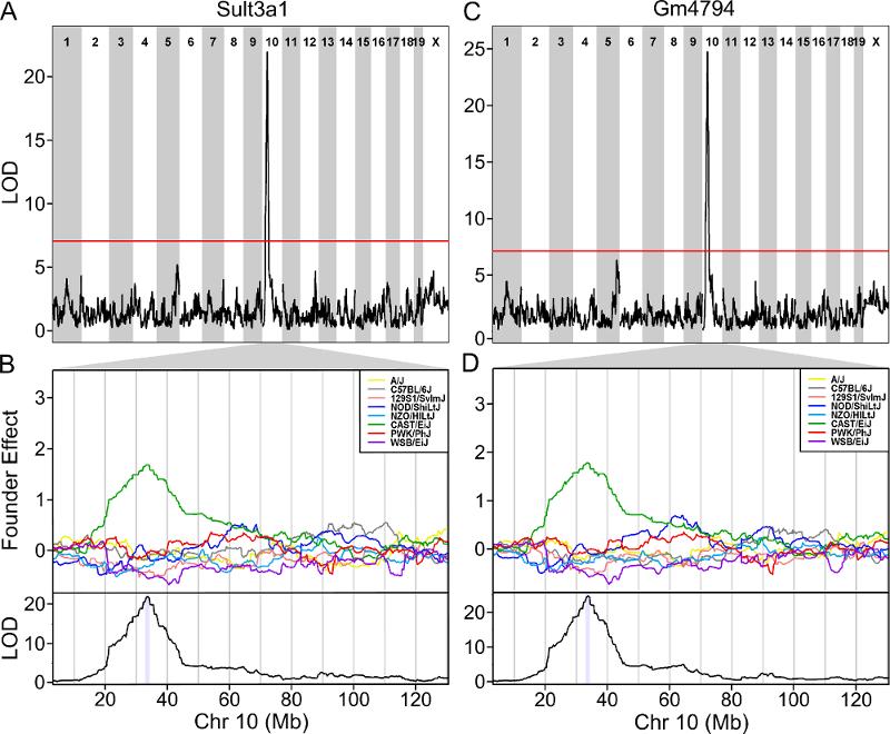 Quantitative Trait Mapping: QTL analysis in Diversity